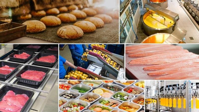 Công nghệ thực phẩm nhiều tiềm năng phát triển