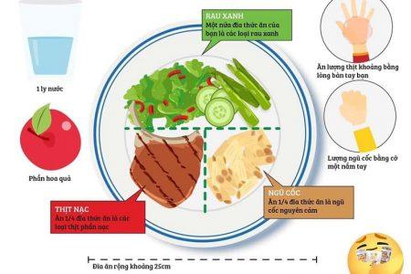 Nguyên tắc cái đĩa và cách ăn uống khoa học